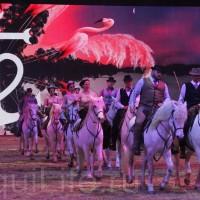 HOP TOP SHOW EQUITANA 2017 - фото IMG_2072_wm_resize-200x200, главная События Фото , конный журнал EquiLIfe