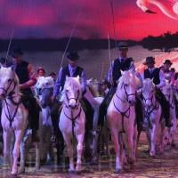 HOP TOP SHOW EQUITANA 2017 - фото IMG_2078_wm_resize-200x200, главная События Фото , конный журнал EquiLIfe