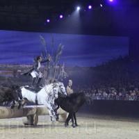 HOP TOP SHOW EQUITANA 2017 - фото IMG_2245_wm_resize-200x200, главная События Фото , конный журнал EquiLIfe