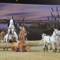 HOP TOP SHOW EQUITANA 2017 - фото IMG_2267_wm_resize-200x200, главная События Фото , конный журнал EquiLIfe