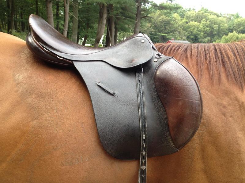 Выбираем седло б/у! На что обратить внимание - фото equineink-com, главная Разное Содержание лошади Тренинг , конный журнал EquiLIfe