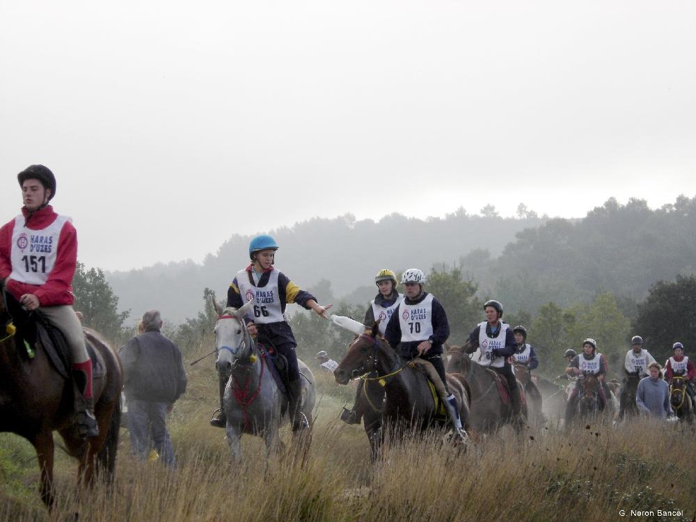 Дистанционные конные пробеги - фото harnessstuff_co_uk, главная Разное Тренинг , конный журнал EquiLIfe