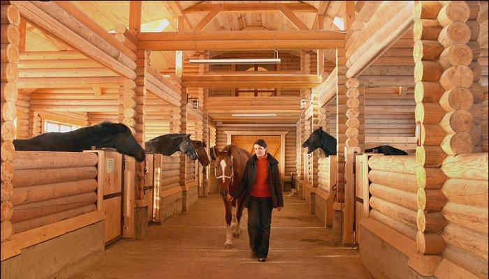 Нужна ли лошади конюшня? - фото 123, главная Содержание лошади , конный журнал EquiLIfe