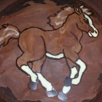 Конные тортики - фото 12974408_956268197820261_4818809176958132019_n-200x200, главная Разное , конный журнал EquiLIfe