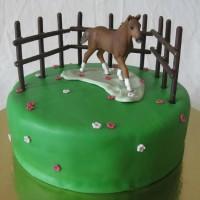 Конные тортики - фото 12990952_956268454486902_8326164499602620197_n-200x200, главная Разное , конный журнал EquiLIfe