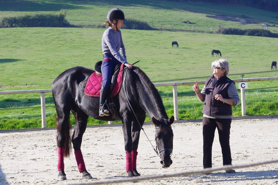 Cеминар классической выездки с Helen Arianoff - фото 7X7iD-qpS8A, главная Новости Тренинг , конный журнал EquiLIfe
