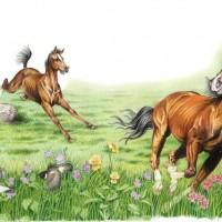 Иллюстратор Александр Николаевич Сичкарь - фото 1265377527_12042008094312-200x200, главная Фото , конный журнал EquiLIfe