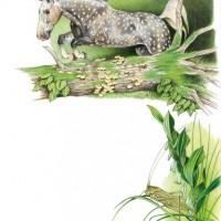 Иллюстратор Александр Николаевич Сичкарь - фото 1265377532_12042008094405-200x200, главная Фото , конный журнал EquiLIfe