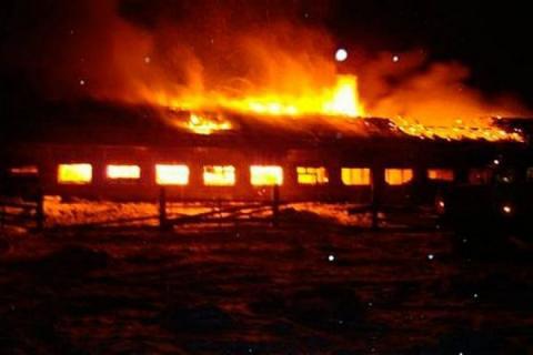 Конюх и 14 лошадей стали жертвами пожара в Ростовской области - фото 515e767d2d90b861242462_600_400, Новости , конный журнал EquiLIfe