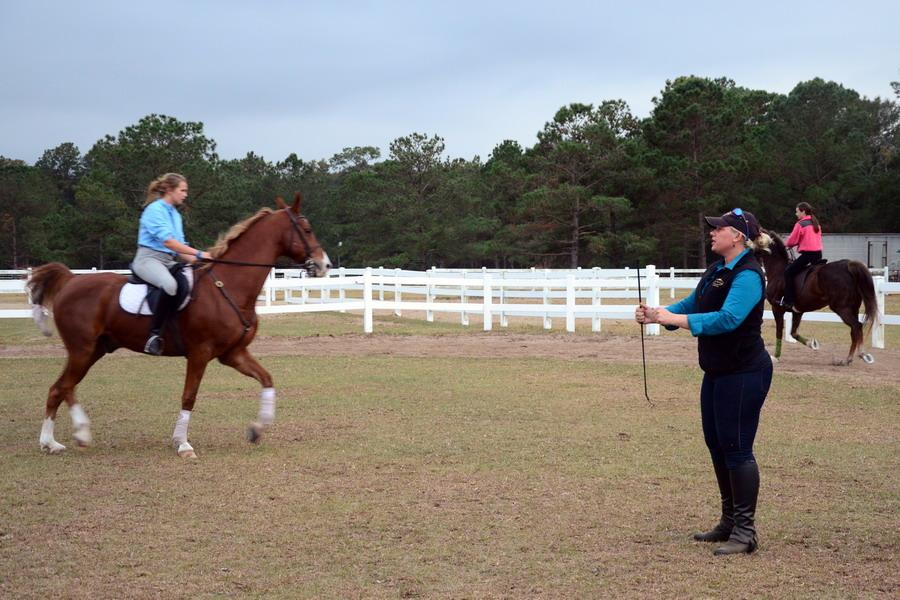 Что же нужно, чтобы навык уступки работал и не изчез со временем? - фото army_mil, главная Поведение лошади Тренинг , конный журнал EquiLIfe