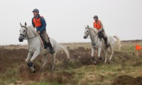 Фото: horsebitsmagazine.com