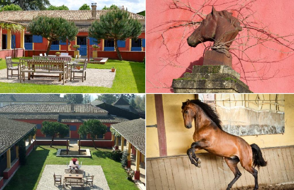 …И ещё семь конюшен мечты! - фото 1-1024x663, главная Содержание лошади , конный журнал EquiLIfe