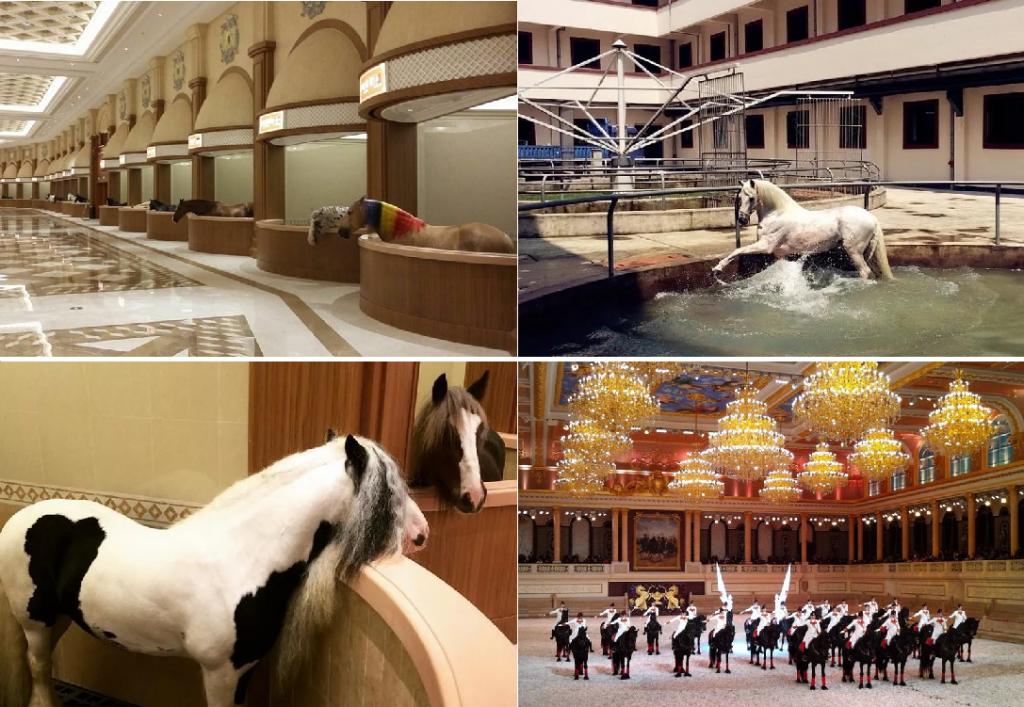 …И ещё семь конюшен мечты! - фото 3-1024x707, главная Содержание лошади , конный журнал EquiLIfe