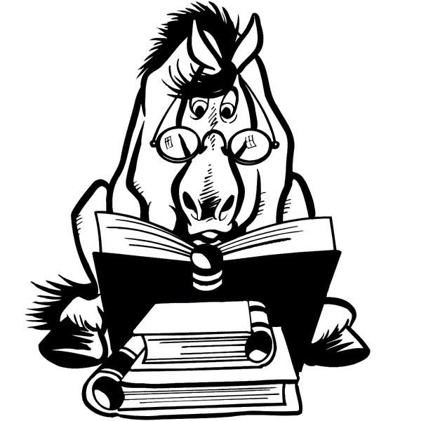 Лучшие статьи о лошадях лета 2017! - фото , главная Разное , конный журнал EquiLIfe