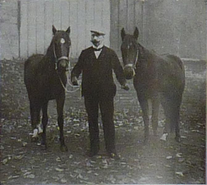 Умные лошади Карла Кралля - фото 671px-Krall_Zarif_Muhamed, главная Разное , конный журнал EquiLIfe