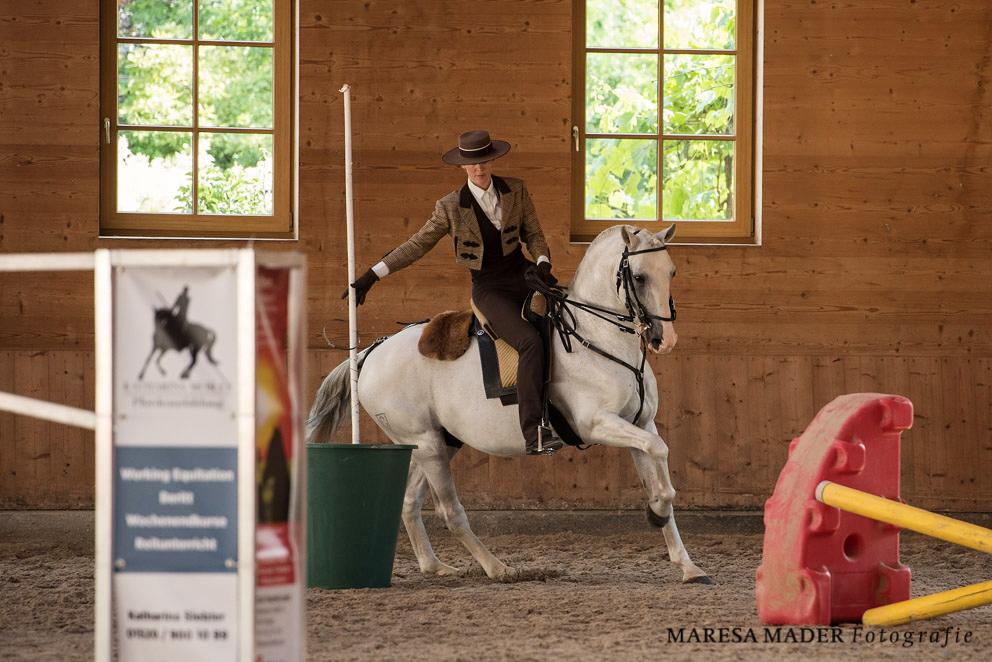 Аня Беран Workshop-2017 - фото MMD1070, Аня Беран главная События Тренинг , конный журнал EquiLIfe