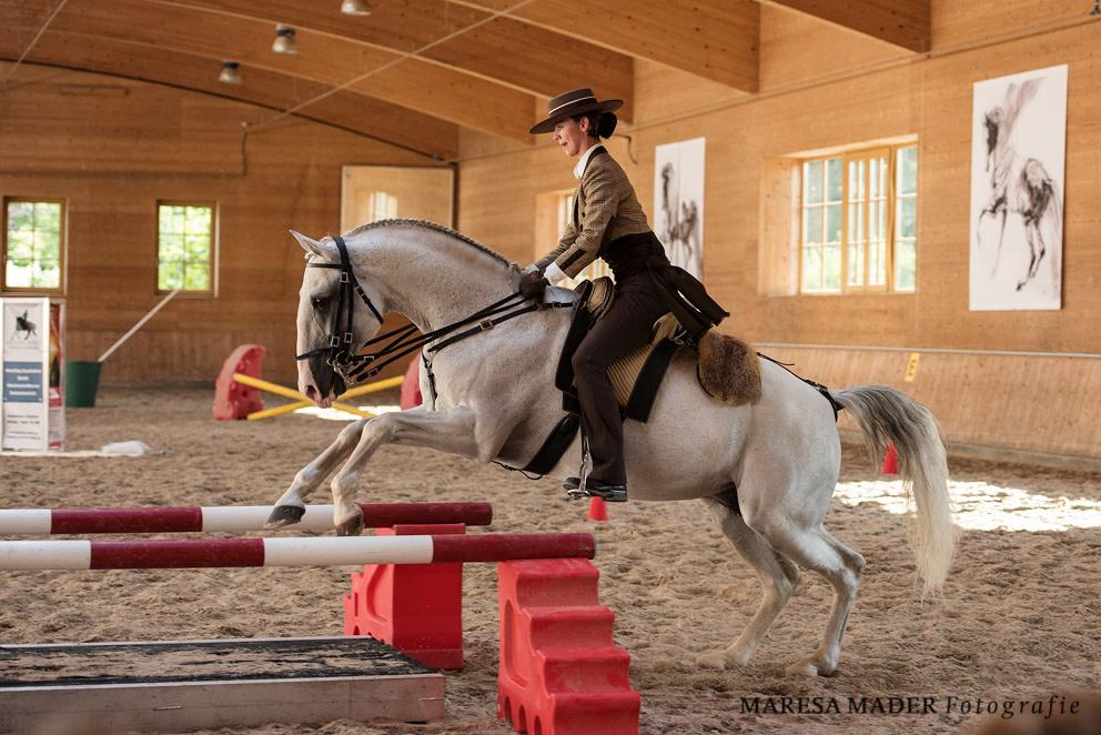 Аня Беран Workshop-2017 - фото MMD1108, Аня Беран главная События Тренинг , конный журнал EquiLIfe