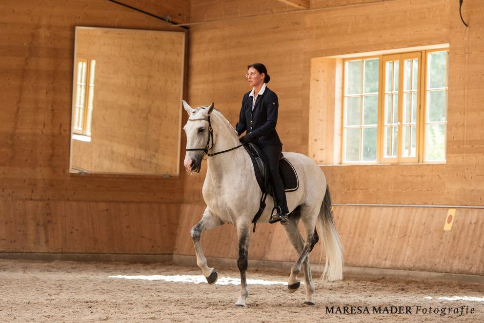 Аня Беран Workshop-2017 - фото MMD8960, Аня Беран главная События Тренинг , конный журнал EquiLIfe