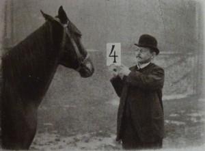 Schoeller_Elberfeld - фото Schoeller_Elberfeld-300x221, , конный журнал EquiLIfe