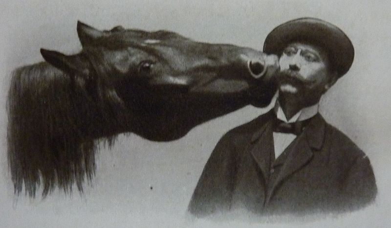 Умный Ганс - фото tumblr_nrphwq0LDF1ri3wfwo1_1280, Recommendation главная Разное , конный журнал EquiLIfe