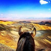 Мир между конских ушей  - фото y8KnkOS6tys-200x200, главная Фото , конный журнал EquiLIfe