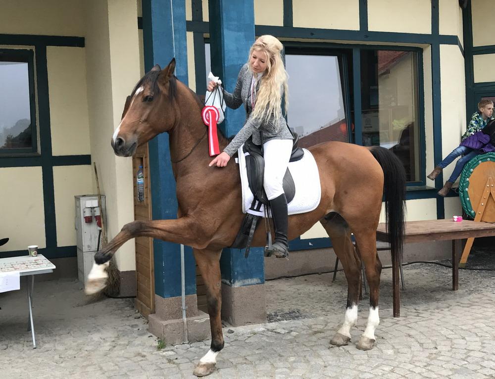 Cоревнования по верховой езде без оголовья-2017 во Вроцлаве. Как это было - фото IMG_9028, главная События Тренинг , конный журнал EquiLIfe