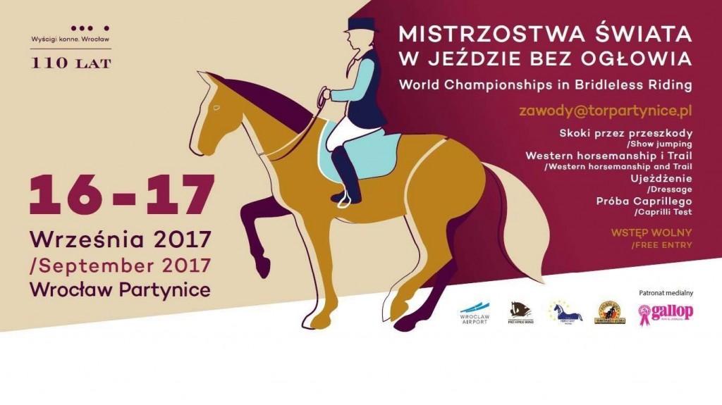 Национальный чемпионат по верховой езде без уздечек пройдёт в Польше - фото TMQnYuiI6FM-1024x575, Новости , конный журнал EquiLIfe