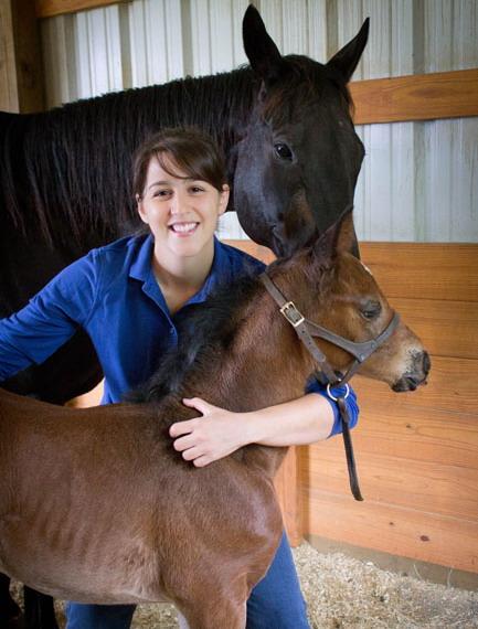 Как приучить лошадь в визитам ветеринара? - фото 20130521-SES_WebsiteIMG_1034, главная Тренинг , конный журнал EquiLIfe
