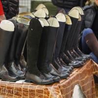 ЭКВИРОС осень 2017: фотоотчет - фото IMG_8210_wm-200x200, главная События Фото , конный журнал EquiLIfe