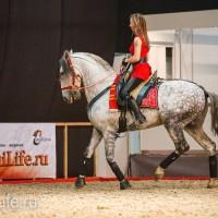 ЭКВИРОС осень 2017: фотоотчет - фото IMG_8787_wm-200x200, главная События Фото , конный журнал EquiLIfe