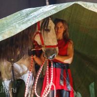 ЭКВИРОС осень 2017: фотоотчет - фото IMG_8828_wm-200x200, главная События Фото , конный журнал EquiLIfe