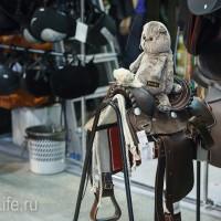 ЭКВИРОС осень 2017: фотоотчет - фото IMG_8998_wm-200x200, главная События Фото , конный журнал EquiLIfe