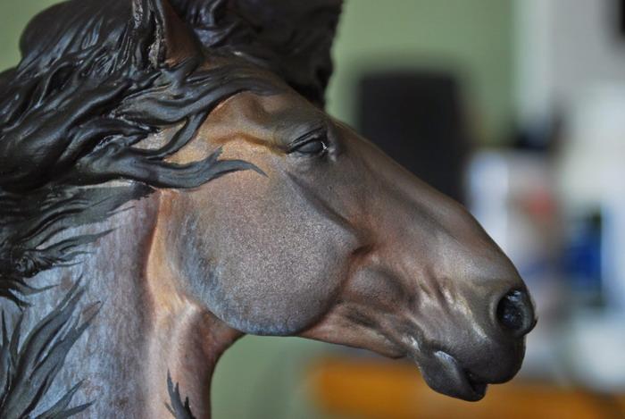 Бизнес на жалости. Есть мнение... - фото DSC_93555, главная Содержание лошади , конный журнал EquiLIfe