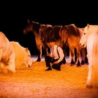 Пьер Флёри (Pierre Fleury) - фото 11266462_975226589175353_5917270336197321862_n-200x200, главная Разное Фото , конный журнал EquiLIfe