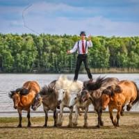 Пьер Флёри (Pierre Fleury) - фото 11351251_975400179157994_1018615502071959161_n-200x200, главная Разное Фото , конный журнал EquiLIfe