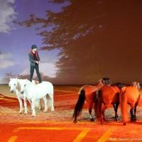 Пьер Флёри (Pierre Fleury) - фото 11703109_1011085248922820_6268204793307020936_n-200x200, главная Разное Фото , конный журнал EquiLIfe