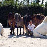 Пьер Флёри (Pierre Fleury) - фото 11836912_1021179504580061_4263874751025150960_n-200x200, главная Разное Фото , конный журнал EquiLIfe