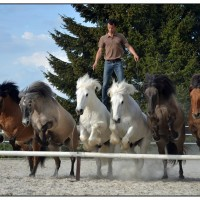Пьер Флёри (Pierre Fleury) - фото 13246164_1198802326817777_5483100665319093007_o-200x200, главная Разное Фото , конный журнал EquiLIfe