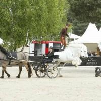 Пьер Флёри (Pierre Fleury) - фото 18425263_1560707947293878_366183823365536147_n-200x200, главная Разное Фото , конный журнал EquiLIfe