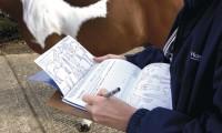 Passport horsemeat