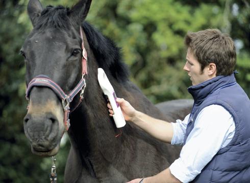 Важная информация о чипировании спортивных лошадей ФКСР - фото microchip, главная Новости , конный журнал EquiLIfe