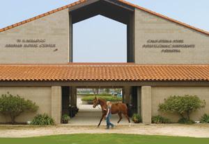 Ферма по разведению арабских лошадей в Помоне - фото arabian1, Конюшня Разное , конный журнал EquiLIfe