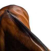 Фотограф Шелли Брайденбах - фото LB4T0Yz5kno-200x200, главная Фото , конный журнал EquiLIfe