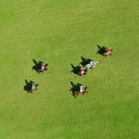 Фотограф Шелли Брайденбах - фото e8nZErGM6K8-200x200, главная Фото , конный журнал EquiLIfe