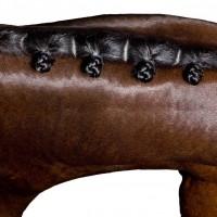 Фотограф Шелли Брайденбах - фото hhlfwu5ImMs-200x200, главная Фото , конный журнал EquiLIfe