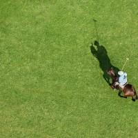 Фотограф Шелли Брайденбах - фото kx5kOVrN9yc-200x200, главная Фото , конный журнал EquiLIfe