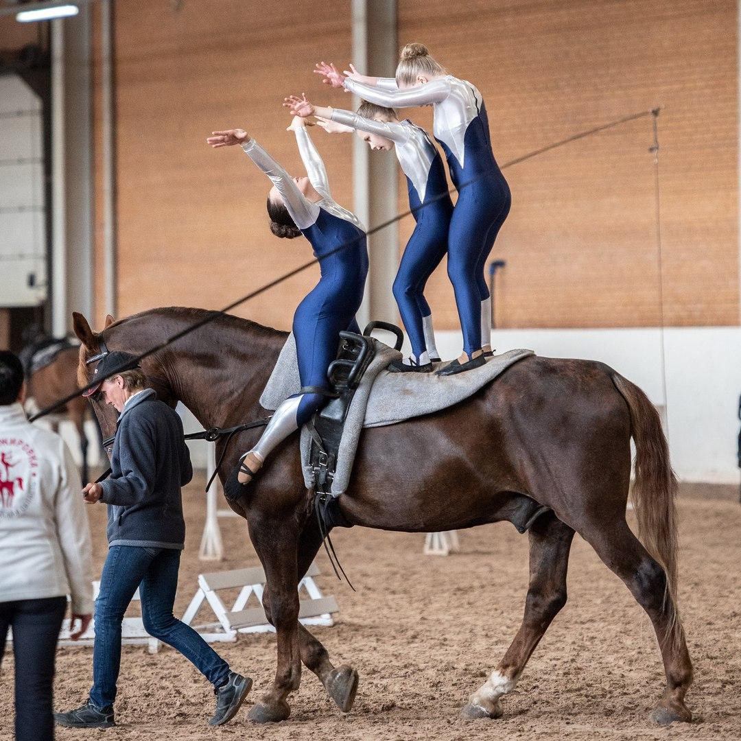 Порхая между небом и землей - фото FAIZu0fTv0g, главная Новости Разное , конный журнал EquiLIfe