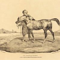 Теодор Жерико - фото 234716-200x200, главная Интересное о лошади Разное , конный журнал EquiLIfe