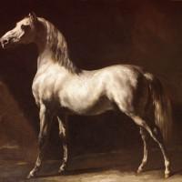 Теодор Жерико - фото Theodore-Gericault-cheval-arabe-gris-blanc-rouen-200x200, главная Интересное о лошади Разное , конный журнал EquiLIfe