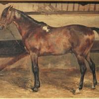 Теодор Жерико - фото cheval_brun__lcurie-200x200, главная Интересное о лошади Разное , конный журнал EquiLIfe
